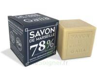 GAIIA SAVON DE MARSEILLE TYPE 1 GM - PUR OLIVE à MONTPEZAT-SOUS-BAUZON