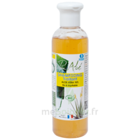 Puraloé Shampooing traitant bio Aloé Véra 250ml à MONTPEZAT-SOUS-BAUZON