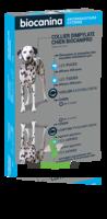 Biocanipro Collier chien B/1 à MONTPEZAT-SOUS-BAUZON